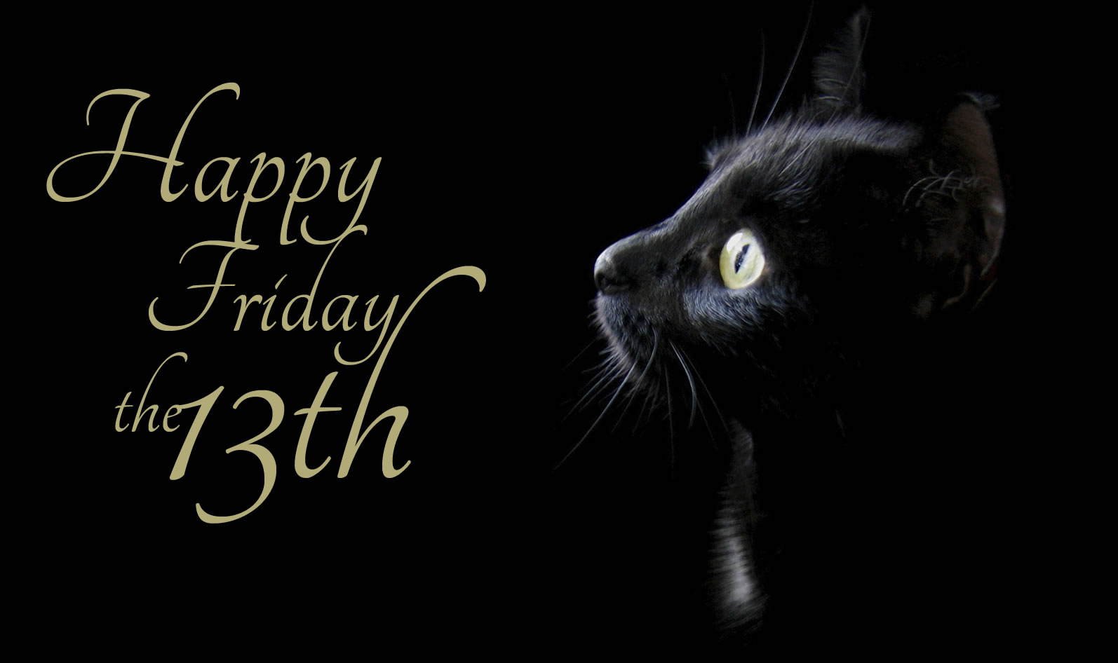 Quotes About Friday The 13th: Happy Friday The 13th Quotes. QuotesGram