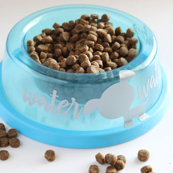 Silhouette Vinyl Cut - Pet Bowl