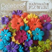 Gorgeous New Celebr8 Flowers!